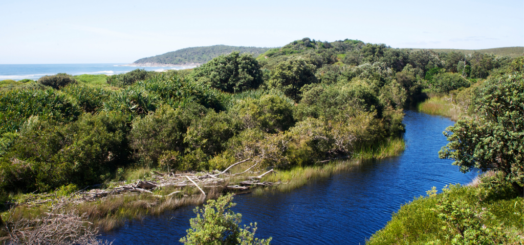 Eco Retreat Mara Creek
